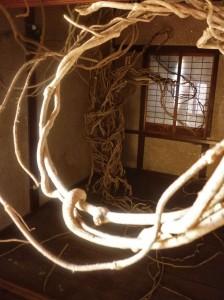 空き家の中から2012