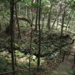 内山地区の原生林の中にある天道神社(裏八丁ともいう)